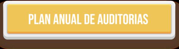 IMAGEN PLAN ANUAL DE AUDITORIAS